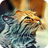 Photo Touch Art Effects