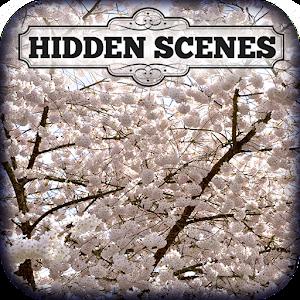 Hidden Scenes First of Spring