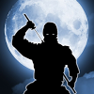 Amazing shadow ninja fight