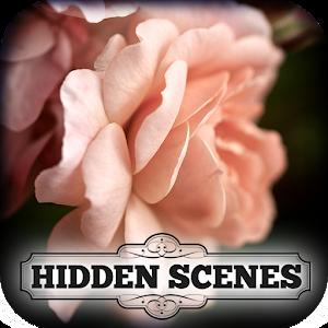 Hidden Scenes - Summer Roses