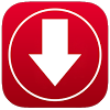 Fast Video Downloader mp4