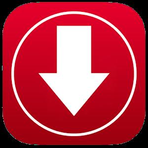 Fast Video Downloader mp4