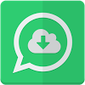 Story Saver for Whatsapp APK icon