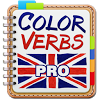 English Irregular Verbs PRO APK