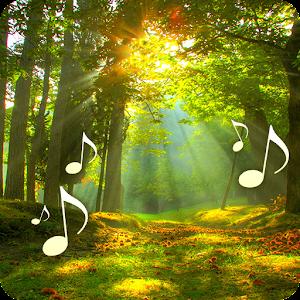 تأثيرات صوتية الغابات