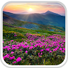 Mountain Flower Live Wallpaper
