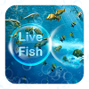 Live Fish Theme APK