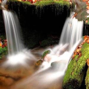 خلفيات الطبيعة الجميلة