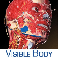 Download Human Anatomy Atlas 2020: Complete 3D Human Body