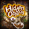 Hidden Objects