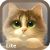 Tummy The Kitten Lite APK