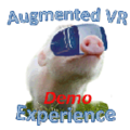 Augmented VR Experience Demo APK